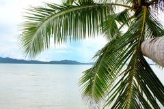 美好的热带天堂 免版税库存图片