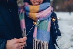 美好的爱恋的在冬天森林圣诞节和新年概念的夫妇灼烧的闪烁发光物 免版税库存照片