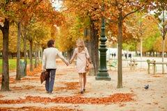 美好的爱恋的夫妇在一秋天天 图库摄影
