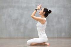 美好的瑜伽:Vajrasana姿势 库存照片