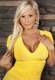 美好的白肤金发的弯曲的图妇女 库存图片