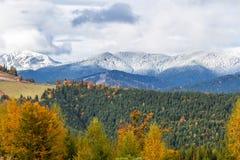 美好的秋天、一个五颜六色的山风景与积雪覆盖的峰顶和黄色树 免版税库存照片