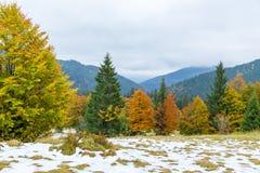 美好的秋天、一个五颜六色的山风景与积雪覆盖的峰顶和黄色树 库存照片