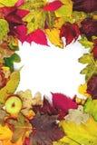 美好的秋天下落的叶子框架  在苹果的角落 图库摄影