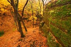 美好的秋天伊利诺伊横向 免版税库存图片