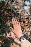 美好的秋天修指甲 免版税库存图片