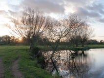美好的秋天光秃的分支没有叶子乡下河太阳s 库存照片