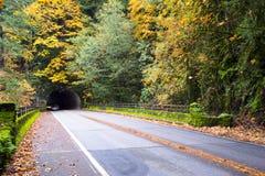 美好的秋天在有路和隧道的森林里 免版税库存照片