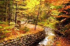 美好的秋天场面 库存照片