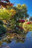 美好的秋天天在公园 免版税库存照片