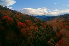 美好的秋天季节在北海道日本上留下颜色变化 库存图片