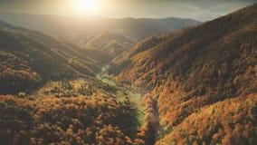 美好的秋天山风景鸟瞰图  库存照片