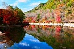美好的秋天山风景 免版税库存图片