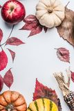 美好的秋天背景用各种各样的五颜六色的南瓜、苹果和秋天在白色桌背景,顶视图离开 库存图片
