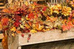 美好的秋天背景 免版税库存图片