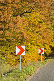 美好的秋天颜色的森林在一个晴天 图库摄影