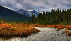 美好的秋天颜色 库存照片