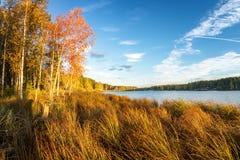 美好的秋天风景全景与湖和森林的俄罗斯,乌拉尔的银行的 库存图片