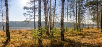 美好的秋天风景全景与湖和森林的俄罗斯,乌拉尔的银行的 免版税库存图片