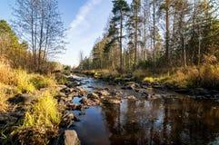 美好的秋天风景全景与湖和森林的俄罗斯,乌拉尔的银行的 库存照片