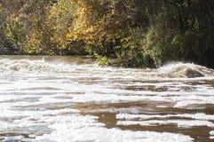 美好的秋天风景在有河急流在阳光下和在背景的五颜六色的树特写镜头的拉脱维亚  图库摄影