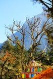美好的秋天风景在海螺沟冰川公园 免版税库存图片