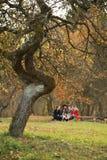 美好的秋天风景,自然颜色在维尔纽斯 免版税库存图片