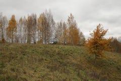美好的秋天风景,自然颜色在维尔纽斯 图库摄影