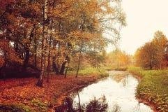 美好的秋天风景,葡萄酒处理 免版税库存照片