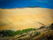 美好的秋天风景,蒙大拿,美国 库存照片