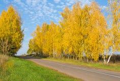 美好的秋天风景 免版税库存照片