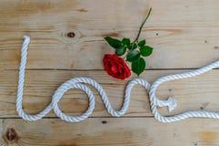 美好的红色玫瑰和爱绳索 库存照片