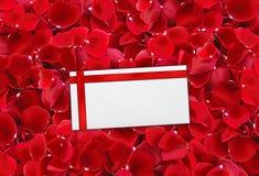 美好的红色玫瑰花瓣背景和包围(信件) 库存图片