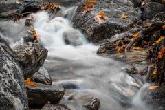 美好的细节关闭柔滑的光滑的流动在森林秋天生动的有选择性的颜色的缎软的河 免版税库存图片
