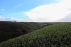 美好的绿色倾斜Gran Sabana委内瑞拉 库存照片