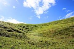 美好的绿色倾斜Gran Sabana委内瑞拉 图库摄影