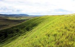美好的绿色倾斜Gran Sabana委内瑞拉 免版税图库摄影