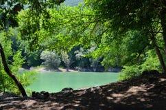 美好的绿色湖风景 库存照片