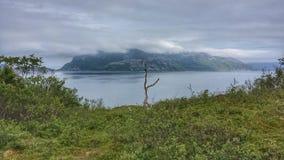 美好的绿色贫瘠风景在与蓝色海湾和海的夏天在远的背景中 免版税图库摄影