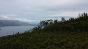 美好的绿色风景在与蓝色海湾和海的夏天在远的背景中 库存照片