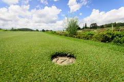 美好的绿色高尔夫球的横向 免版税图库摄影