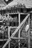美好的老葡萄酒装壶流洒了在英国co的外部细节 图库摄影