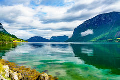 美好的自然挪威 库存图片