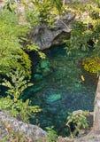 美好的自然盛大Cenote在墨西哥 免版税库存图片