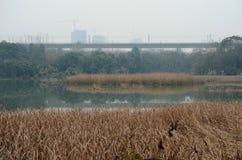 美好的自然风景在农村中国 免版税库存照片
