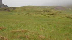 美好的自然风景在冰岛 股票录像