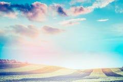 美好的自然风景,领域,二面对切的条纹在阳光下,与日落天空,弄脏了背景 免版税库存图片
