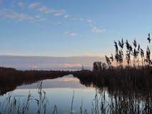 美好的芦苇近的chanel,立陶宛 库存照片