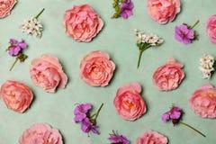 美好的花卉构成 库存照片