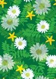 美好的花卉模式无缝的瓦片 图库摄影